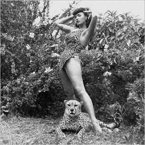 Bettie page cat1